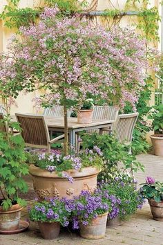 Small courtyard gardens - 37 Fresh Cottage Garden Ideas for Front Yard and Backyard Inspiration – Small courtyard gardens Small Flower Gardens, Small Courtyard Gardens, Small Courtyards, Courtyard Design, Patio Design, Plants For Small Gardens, Small Front Gardens, Diy Design, Design Jardin