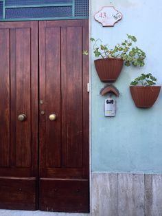 #door#oldbutgold#brown#living#home