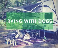 "One of the biggest benefits of RVing, is that you can easily take your four-legged friends with you. However there are some things to keep in mind when you do. So take a look at some of these tips for RVing with your dogs. RVTravel talks with an RVer about ""basic campground rules"" when RVing"