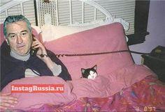 ROBERT DE NIRO ОТДЫХАЕТ СО СВОЕЙ КОШКОЙ РИТОЙ #funny #humor #selfie #smile #fun #swag #style #lol #russia   #deniro