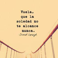 Vuela, que la soledad no te alcance nunca*