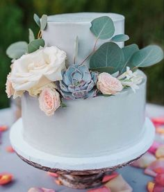 Perfect Iced Duck Egg Blue cake ! We love the succulents and Eucalyptus leaves to make the colour even more muted and dusky.......Very on trend !