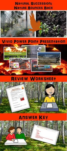 Solid Waste Management Lesson with Power Point, Worksheet, and ...