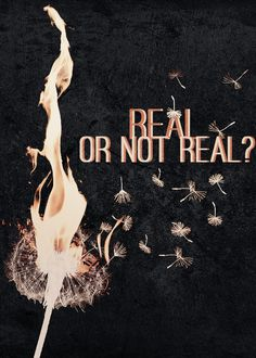 the Hunger Games  real or not real?