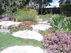 Have You Always Wanted to Redesign Your Home's Landscape But Don't Know Where to Start?