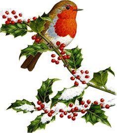 Glanzbild Rotkehlchen Weihnachtsanhänger aus Glanzbildern basteln auf jede Seite einer dicken Pappe ein Bild, Naturfaden als Aufhänger