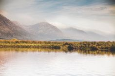 Ireland offers some of the best and most affordable fishing for Atlantic salmon, sea trout, and native brown trout in the world. Atlantic Salmon, Brown Trout, Connemara, West Coast, Ireland, Fishing, Houses, Adventure, Mountains
