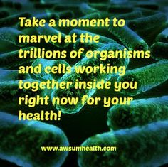 Our bodies are a microcosm of wonder! New blog on #probiotics for your #health - look in #nutrition on www.awsumhealth.com