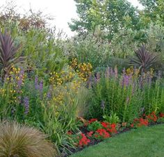 Tall plantings to hide chain link fence.... or, to hide the ugly neighbors yard ;)