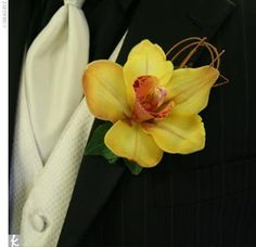 a bright yellow orchid to add a splash of color