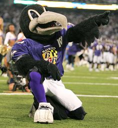 Poe, from the Baltimore Ravens!