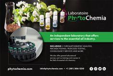 Oil Industry, Naha, Chemistry, Essential Oils, Essential Oil Uses, Essential Oil Blends