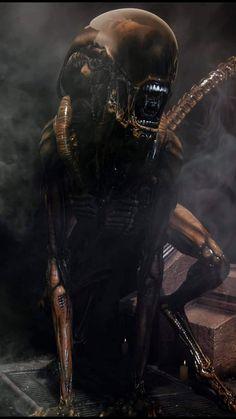 Alien Pictures, Creepy Photos, Hr Giger Art, Giger Alien, Alien Covenant, Airbrush Designs, Alien Concept Art, Aliens Movie, Alien Vs Predator