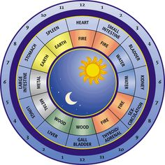 do you awake at the same time every night? see what your body might be trying to tell you with this Chinese body clock