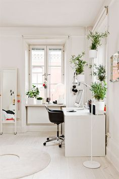 office inspiration. Lots of plants.