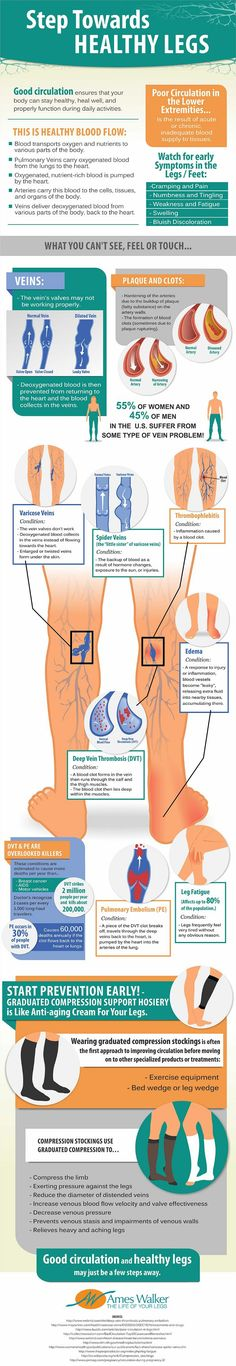 6 Steps To Healthy Blood Circulation Manual Guide