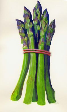 asparagus print | The original painting of this Asparagus Connovers Colossus is ...