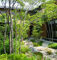 This with crepe myrtle Fence Landscaping, Tropical Landscaping, Tropical Garden, Japanese Garden Design, Garden Landscape Design, Landscape Architecture, Japan Garden, Gravel Garden, Landscape Concept