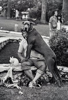 Lap dog by Elliot Erwitt via Old Chum