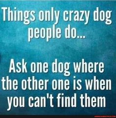 I Love Dogs, Puppy Love, Crazy Dog Lady, Dog Quotes, Snoopy Quotes, Qoutes, Happy Dogs, Dog Life, Dog Mom