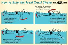 Utilizing constantly rotating arms, flutter-kicking legs, and efficient breathing techniques, the front crawl is sure to get you from A to B in a hurry.