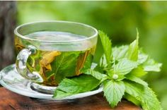 Iaso Tea is like a white tea, a green tea, a weight loss tea, and a great tasting herbal tea all in one. Iaso Tea is Certified Organic. Healing Herbs, Medicinal Herbs, Herbal Remedies, Natural Remedies, Snoring Remedies, Tea Recipes, Healthy Recipes, Healthy Fit, Best Green Tea