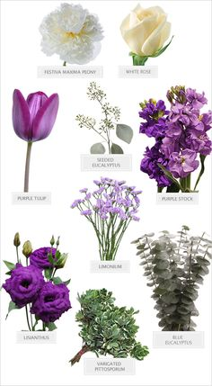 Purple wedding bouquet recipe  Love As Deep As The Sea