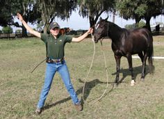 Horse Training Tips – Protecting Your Space
