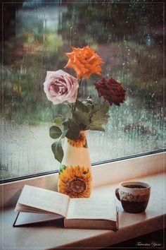 Летний ливень за окном by Yana Tatevosian on 500px
