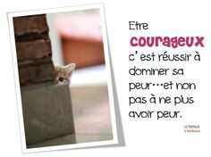 Peur ... Courage ...