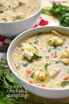 Homemade Chicken & Dumplings ~ a comfort food classic featuring flavorful broth loaded with tender chunks of chicken, sweet carrots, fresh thyme, and fluffy dumplings | FiveHeartHome.com