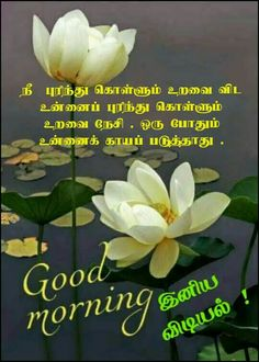 Tamil Motivational Quotes, Good Morning Inspirational Quotes, Good Morning Quotes, Morning Pictures, Morning Images, Tamil Wishes, Sunset Gif, Good Morning Flowers, Good Morning Messages