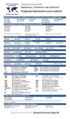 Deutsche Grammatik, Artikel: der, die oder das? Genusregeln - weibliche Substantive - Regeln, Ausnahmen und Beispiele