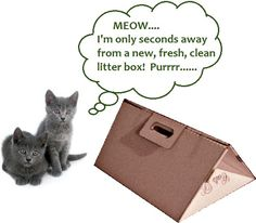 A fresh litter box is on the way...