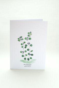 Kräuterwanderung | Wegesrandkraeuterkarte Gundermann | greeting card with wild herbs |  ground ivy | STUDIOKARAMELO