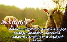Tamil bible verse, sheep, shepard, psalms