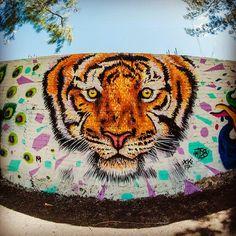BigFace!! En el Parque Zoológico Áreas Verdes #graffiti #kide #graffitiart #zoo #spraypaint #moroleón #streetstyle #streetart #painting #graffitiartist #tigger #wallart #nikon #illustration #aerosolart #graffitiartmagazine