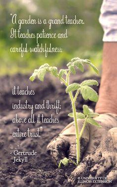 Plants Quotes Green Garden Signs 42 Ideas For 2019 Gardening For Beginners, Gardening Tips, Kitchen Gardening, Plants Quotes, Garden Quotes, Garden Poems, Garden Club, Garden Art, Glass Garden