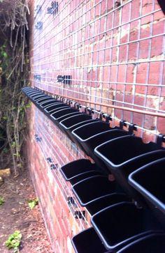 Pots and irrigation for a greenwall www.urbangreenwall.com.au