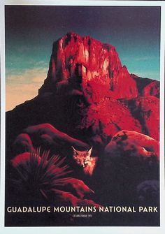 Guadalupe Mountains National Park, National Parks, Cards, Movie Posters, Movies, Films, Film Poster, Cinema, Maps