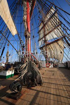 Main upper topsail halliard, four masted barque Sedov, Tall Ship Race 2009…