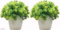 Checkout this latest Artificial Plant, Flower and Shrubs Product Name: *Decorative Artificial Bonsai Plant* Easy Returns Available In Case Of Any Issue   Catalog Rating: ★3.9 (1565)  Catalog Name: Classy Decorative Artificial Bonsai Plants Vol 1 CatalogID_480830 C127-SC1610 Code: 682-3456021-468