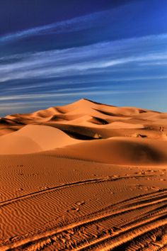 Gorgeous Sahara