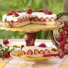 Easy Cake Recipes - New ideas Easy Vanilla Cake Recipe, Chocolate Cake Recipe Easy, Easy Cake Recipes, Sweet Recipes, Mini Cheesecakes, German Cake, Mini Foods, No Bake Cookies, Cheesecake Recipes