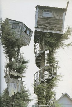 Combining two of the best inventions: tree house & spiral staircase: Schräg ;-) und irgendwie cool