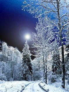 cela ressemble à là où nous vivons, que plus de neige et les arbres plus courts :) sérieux de merveilles d'hiver, narnia :):