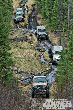 Trail consists of narrow roads cut for seismic exploration.