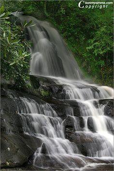 Laurel Falls - Great Smoky Mtns