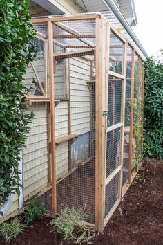 My Finished Catio, With Lots of Catio-Building Tips Outside Cat Enclosure, Diy Cat Enclosure, Rabbit Enclosure, Outdoor Cat Pen, Cat Kennel, Cat Cages, Animal Room, Cat Condo, Cat Room