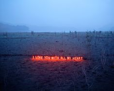I love you with all my heart neon Text works by artist Lee Jung Quote Girl, With All My Heart, My Love, Lee Jung, Korean Artist, Neon Lighting, Love Words, Les Oeuvres, Love Quotes